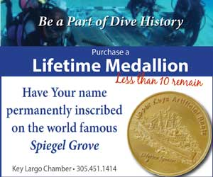 Medallion300x250
